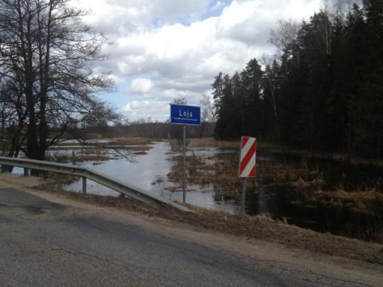 Loja vietā, kur upi šķērso Raga - Limbaži ceļš